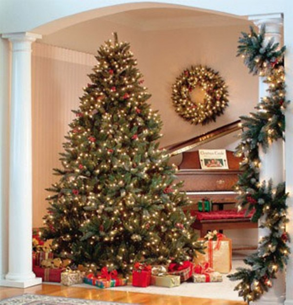 Christmas-Trees-Pictures1