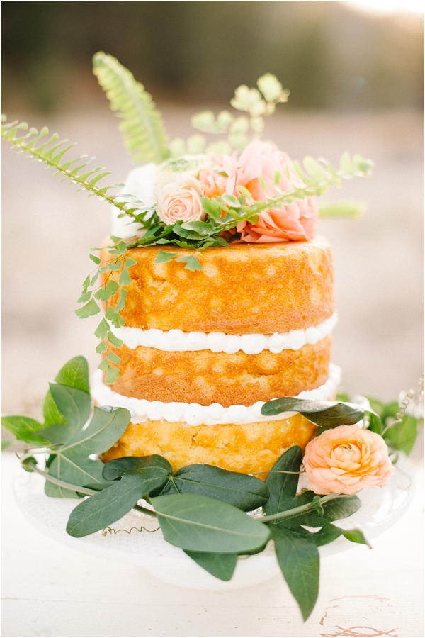 Daniel Cruz Photography naked cake